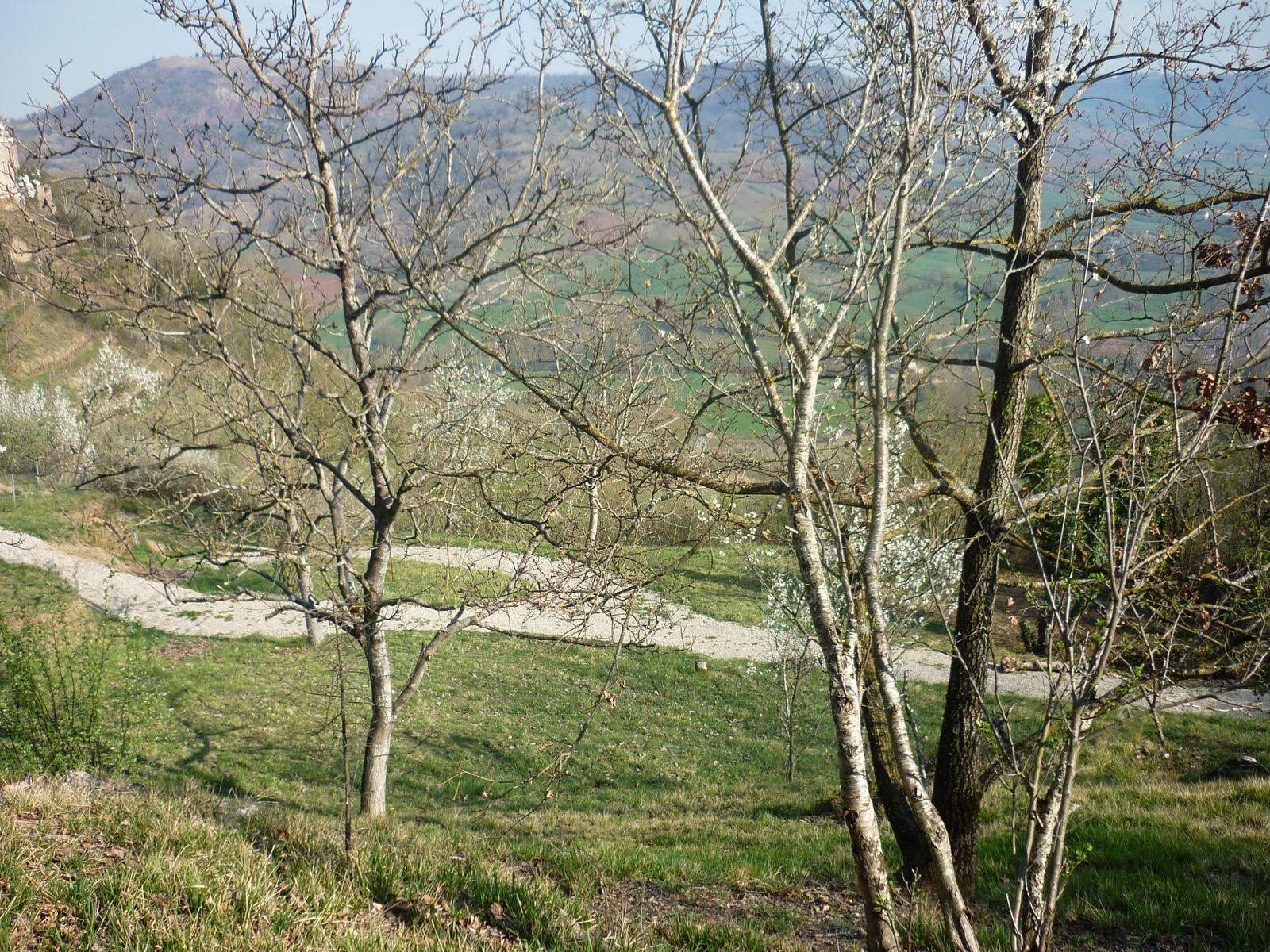 Vue sur la vallée de l'Ady