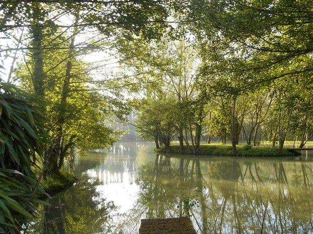 L'étang privé de 1,5 hectare