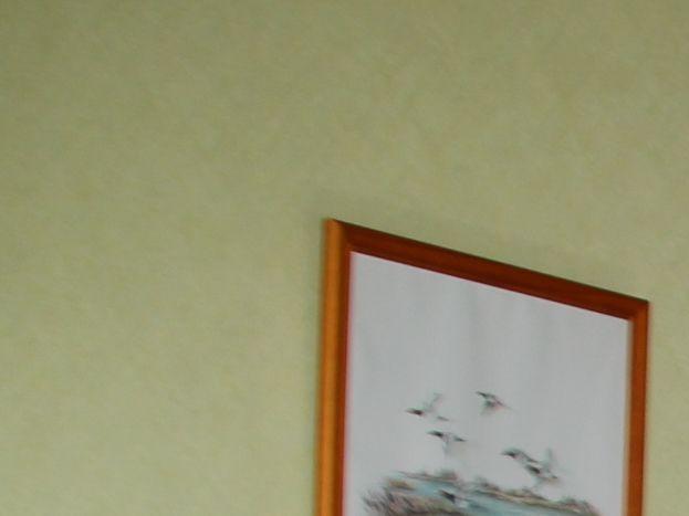 chambre verte côté cour RDC