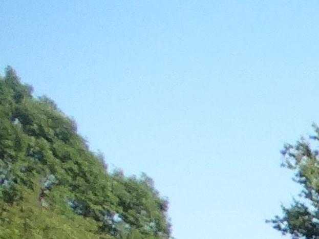 Photo 18/18