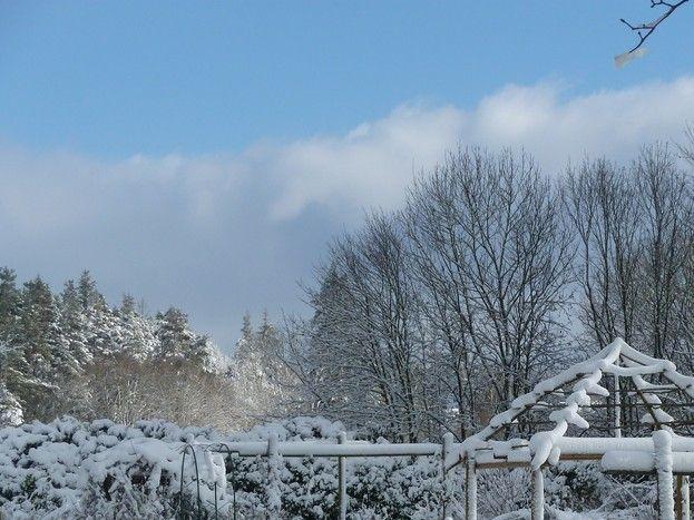 Le jardin sous la neige