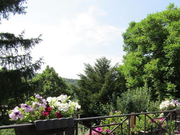 Terrasse offrant magnifique  vue sur la vallée de la Borne