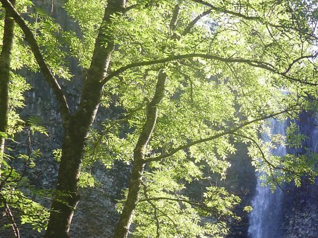 cascade de la Baume
