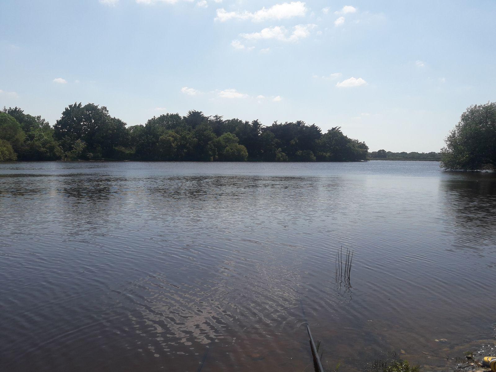 étang a 1km du gite