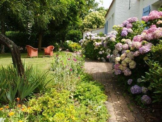 terrasse privée de CAMELIA (directement sur la pelouse)