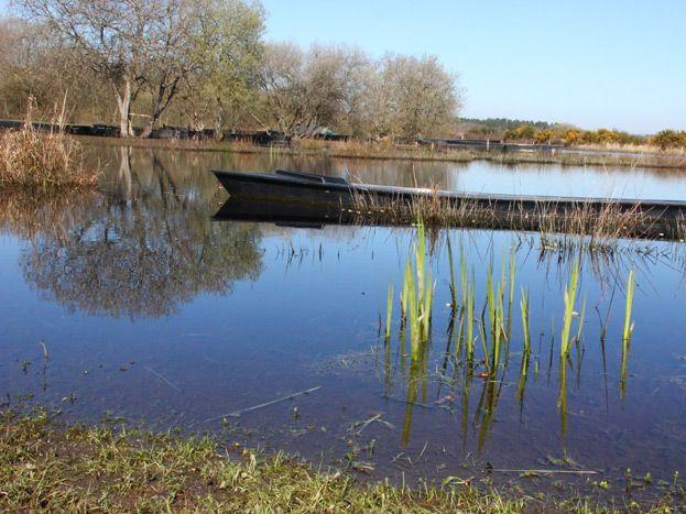 Le marais de Brière à 3 km de la maison.