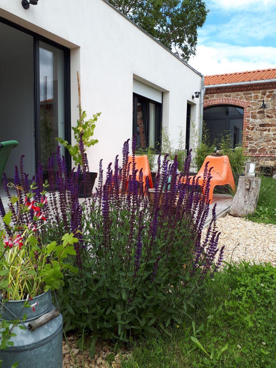 Terrasse et jardin champêtre