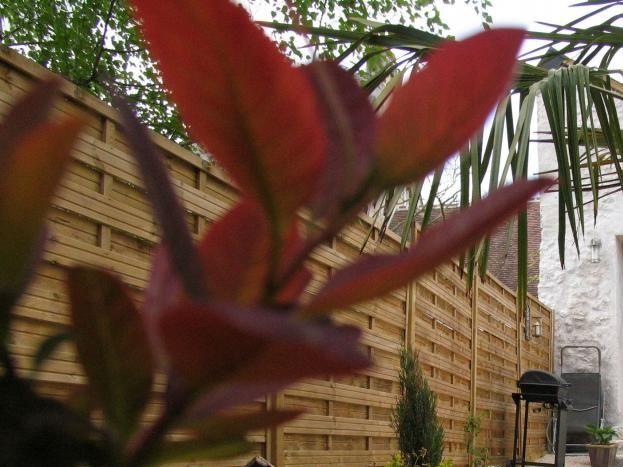Profitez du soleil et de grillades en toute intimité dans votre jardin privatif
