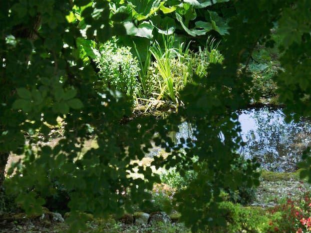 Au fond du jardin coule une rivière