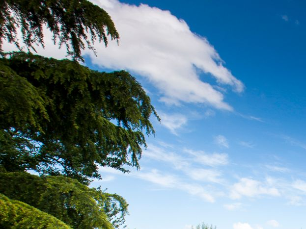 Jardin clos vue panoramique