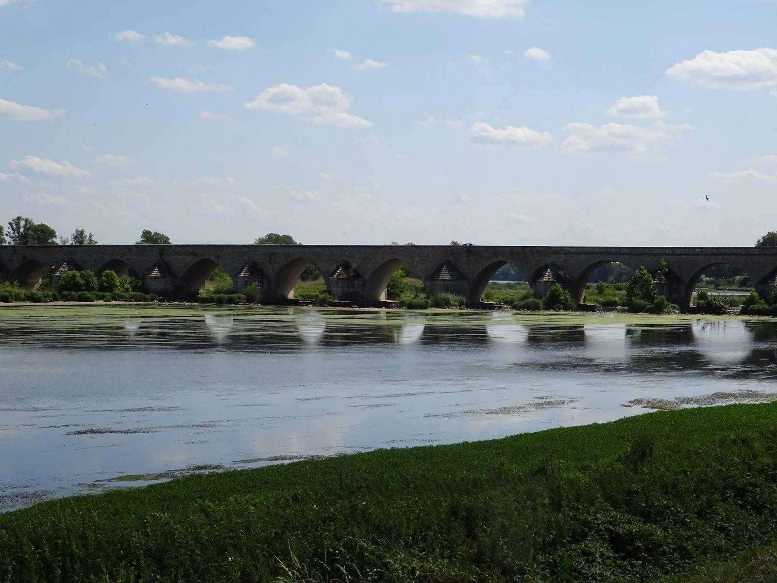 La Loire à 100 m