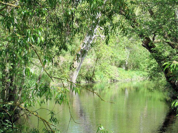 """La rivière """"Fusain"""" juste au bout du parc"""