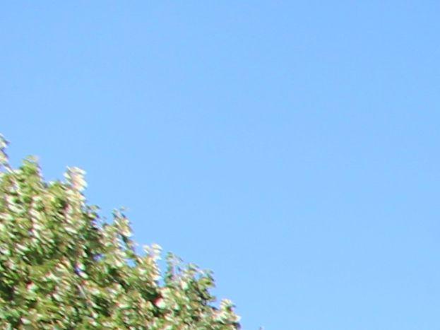 Photo 9/12