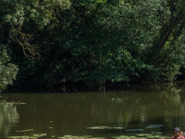 Balade en canoë