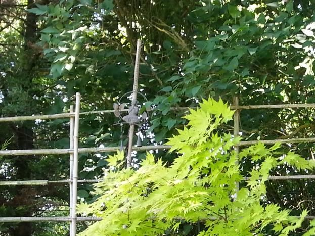 Un coin Zen dans le jardin