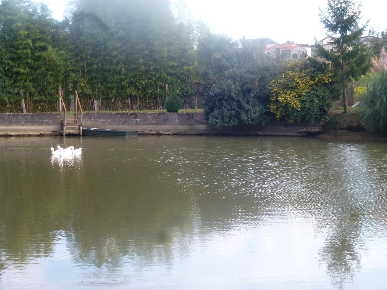 étang pour vous promener