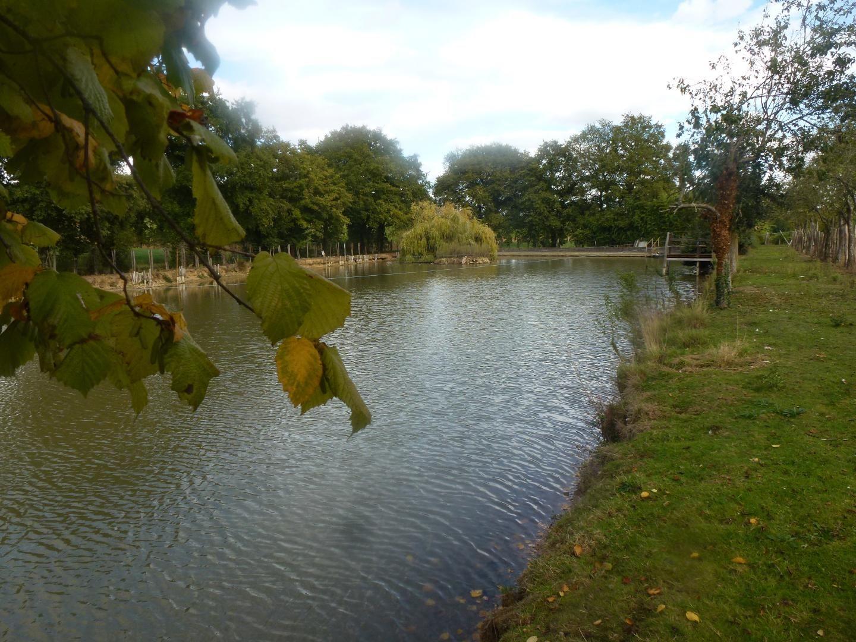autre vue de l'étang avec pêche possible