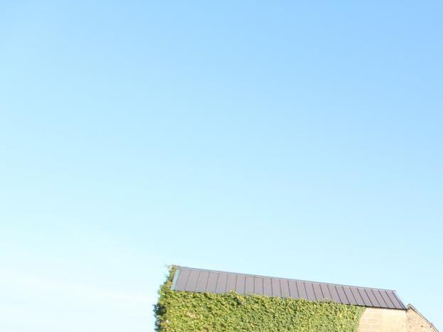Photo 12/13