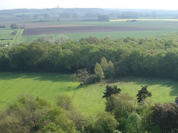 Vue aérienne du Logis de la Pichonnière