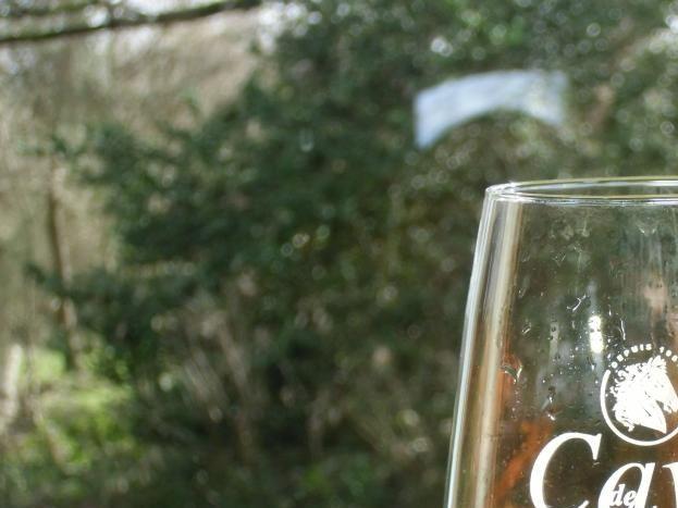 Hébergement labellisé Vignobles et découvertes