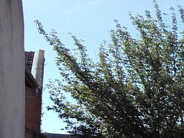 grande cour pour garer les voitures 51G466 - Chez Bri-Gîte - Loisy sur Marne - Gîtes de France Marne
