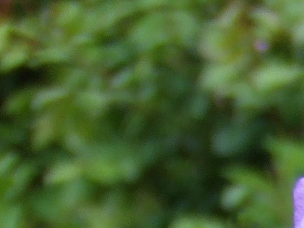 Légende du Gîte 51G250 - Les Iris - Outines - Gîtes de France Marne