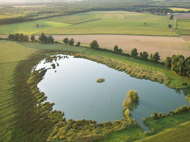 Etang de pêche à 200 m du gite 51G1046 - Les Clés d'Emeraude - Outines - Gîtes de France Marne