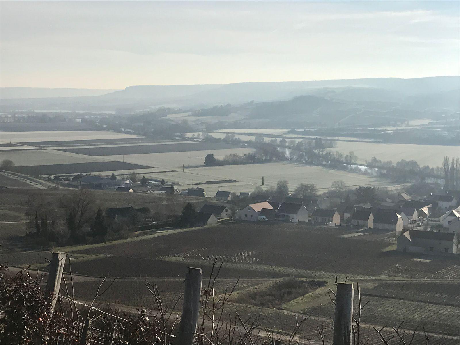 Vue sur les coteaux champenois 51G472 - La maison du vigneron - Vincelles - Gîtes de France Marne
