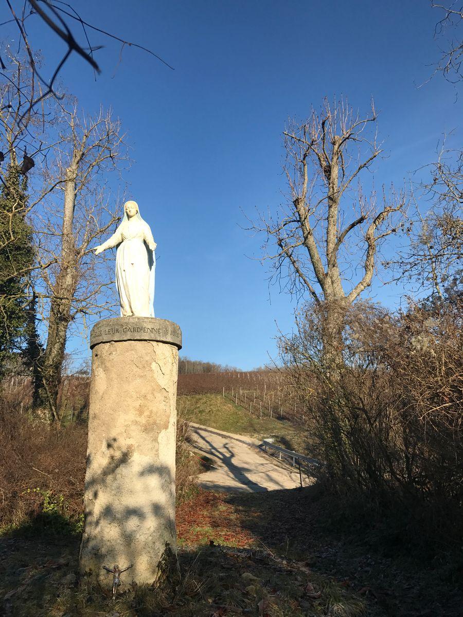 """Lieu dit """"La sainte"""" à Vincelles 51G472 - La maison du vigneron - Vincelles - Gîtes de France Marne"""