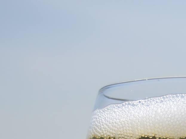 Notre champagne bio 51G472 - La maison du vigneron - Vincelles - Gîtes de France Marne