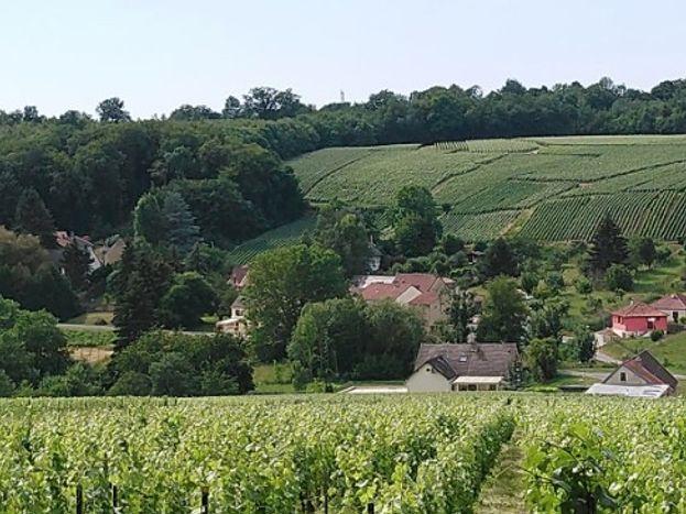 Le gite des Sources se situe dans ce hameau, au milieu des vignes