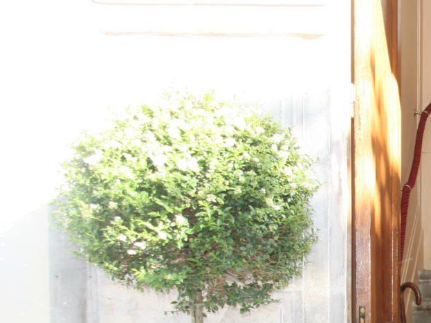 Entrée La Demeure des Sacres Maison d'hôtes Reims