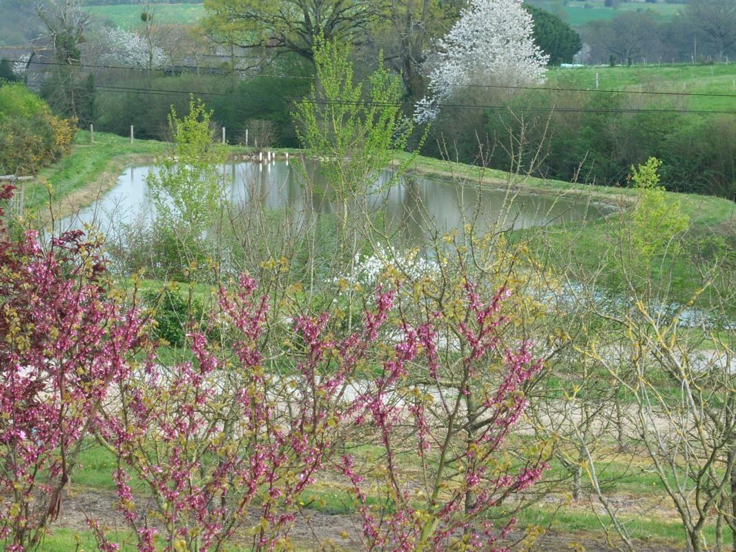Vue sur le plan d'eau au printemps naissant