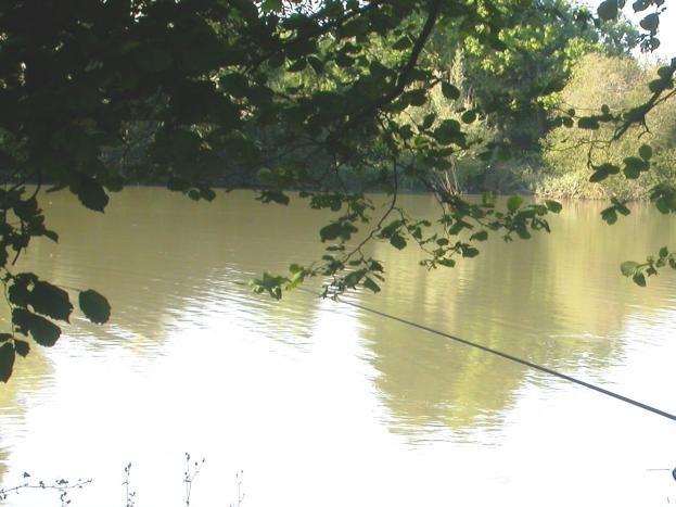 pêche autour du plan d'eau, calme et sereinité