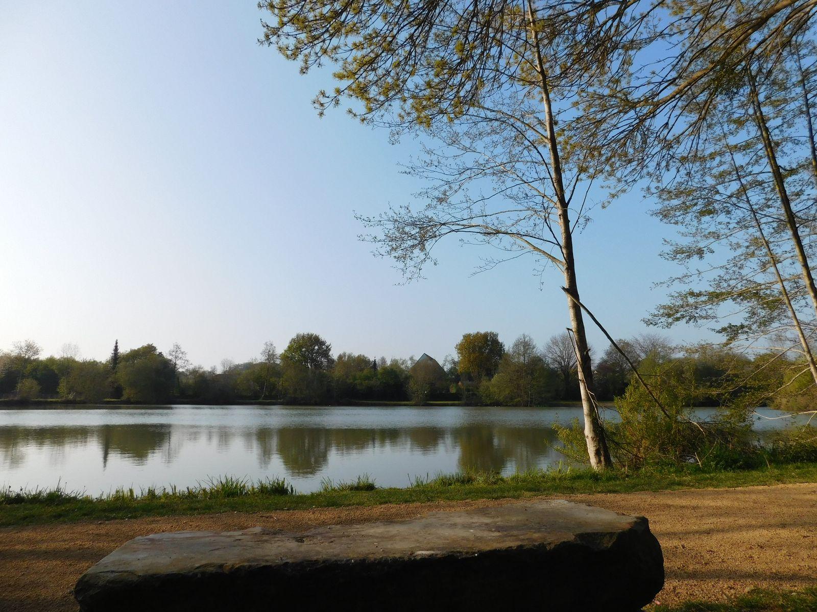 Plan d'eau du Daviers, Bouère