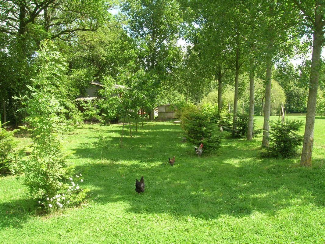 La nature à votre portée avec des animaux sauvages et domestiques comme les poules