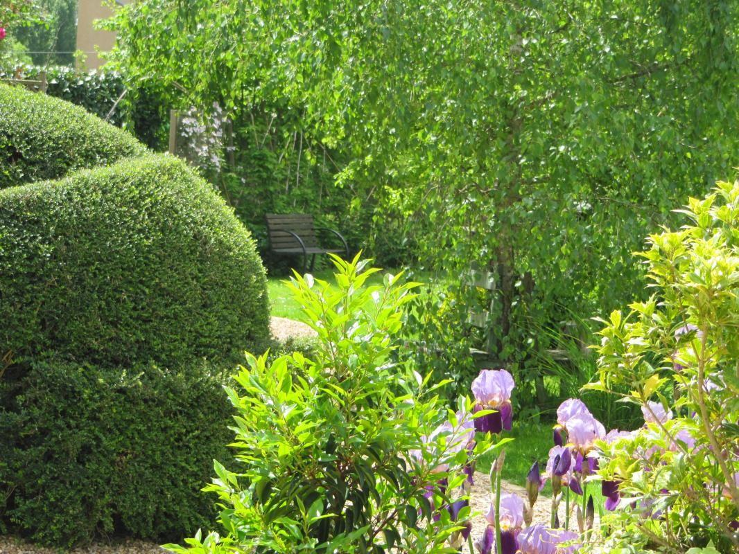 Arbustes taillés de toute forme.