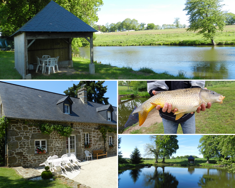 En Mayenne, la Hamelinière vous propose un vrai bain de verdure et de calme