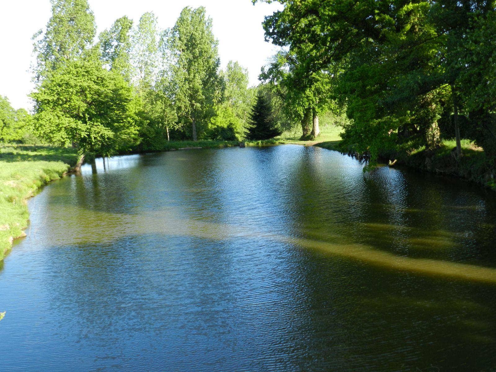 Notre étang privé à 150 m. Accès possible en voiture.