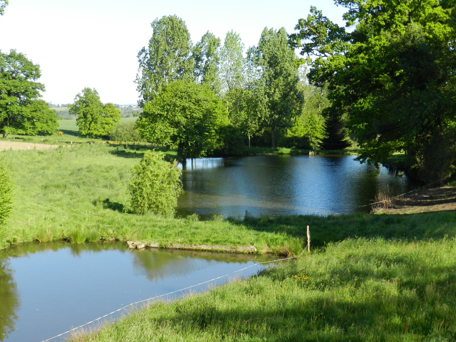 vue des 2 étangs