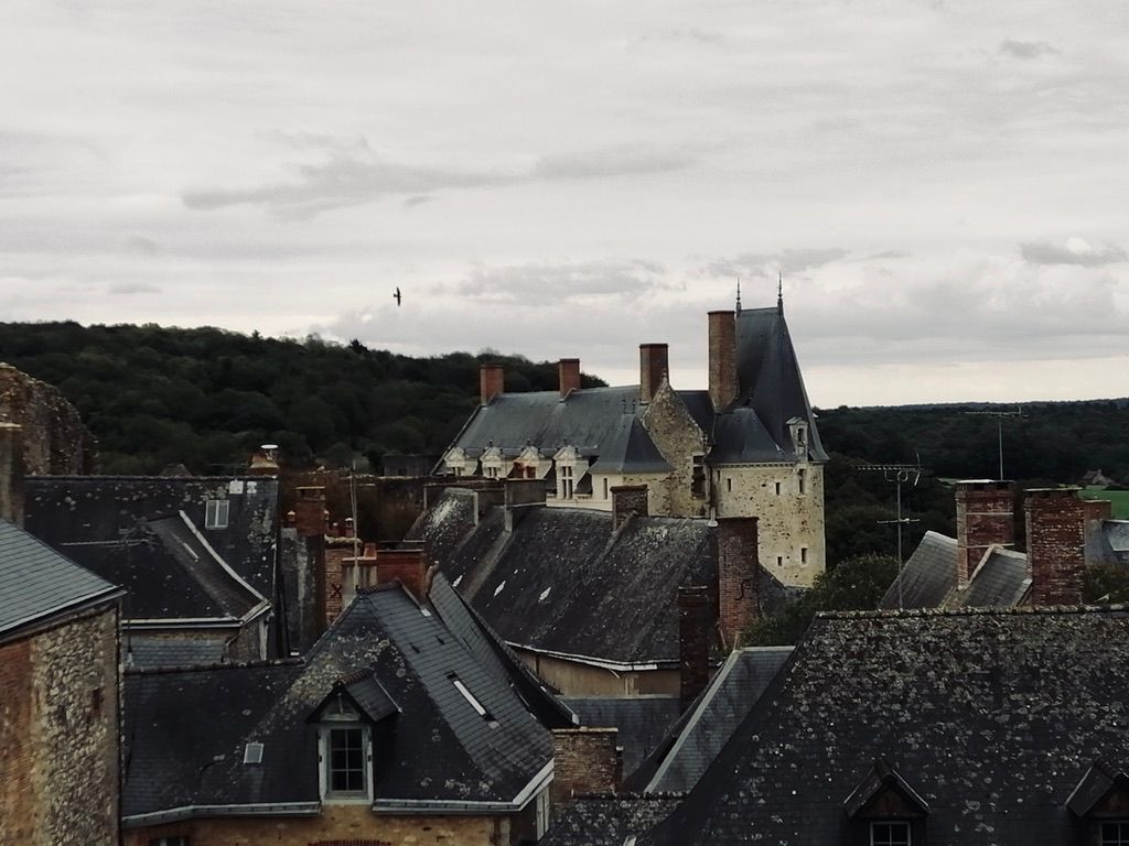 Vue des toits