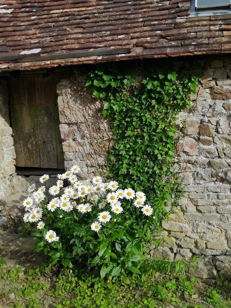 Les vieilles pierres de Sainte-Suzanne