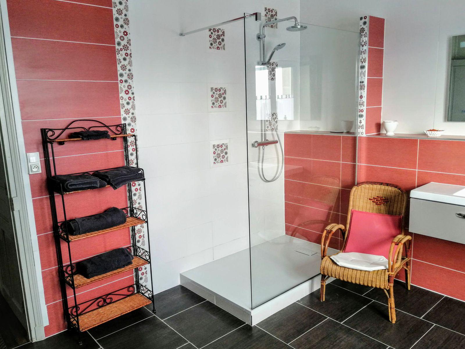 Salle de bain, douche.