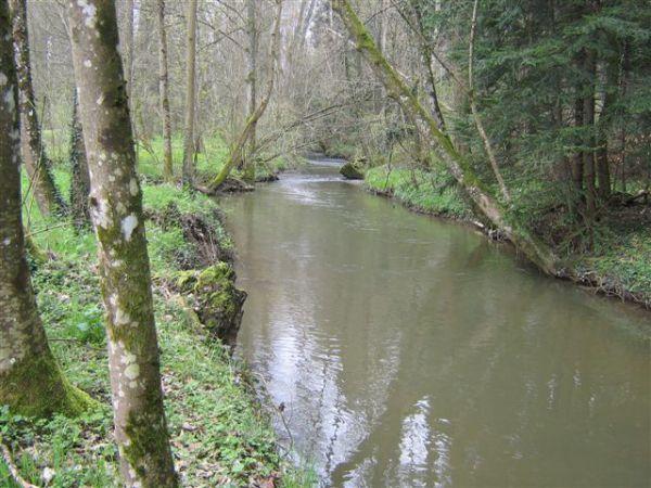 La Blette , petite rivière de 2°catégorie, serpente à 10 mètres,  derrière le gîte