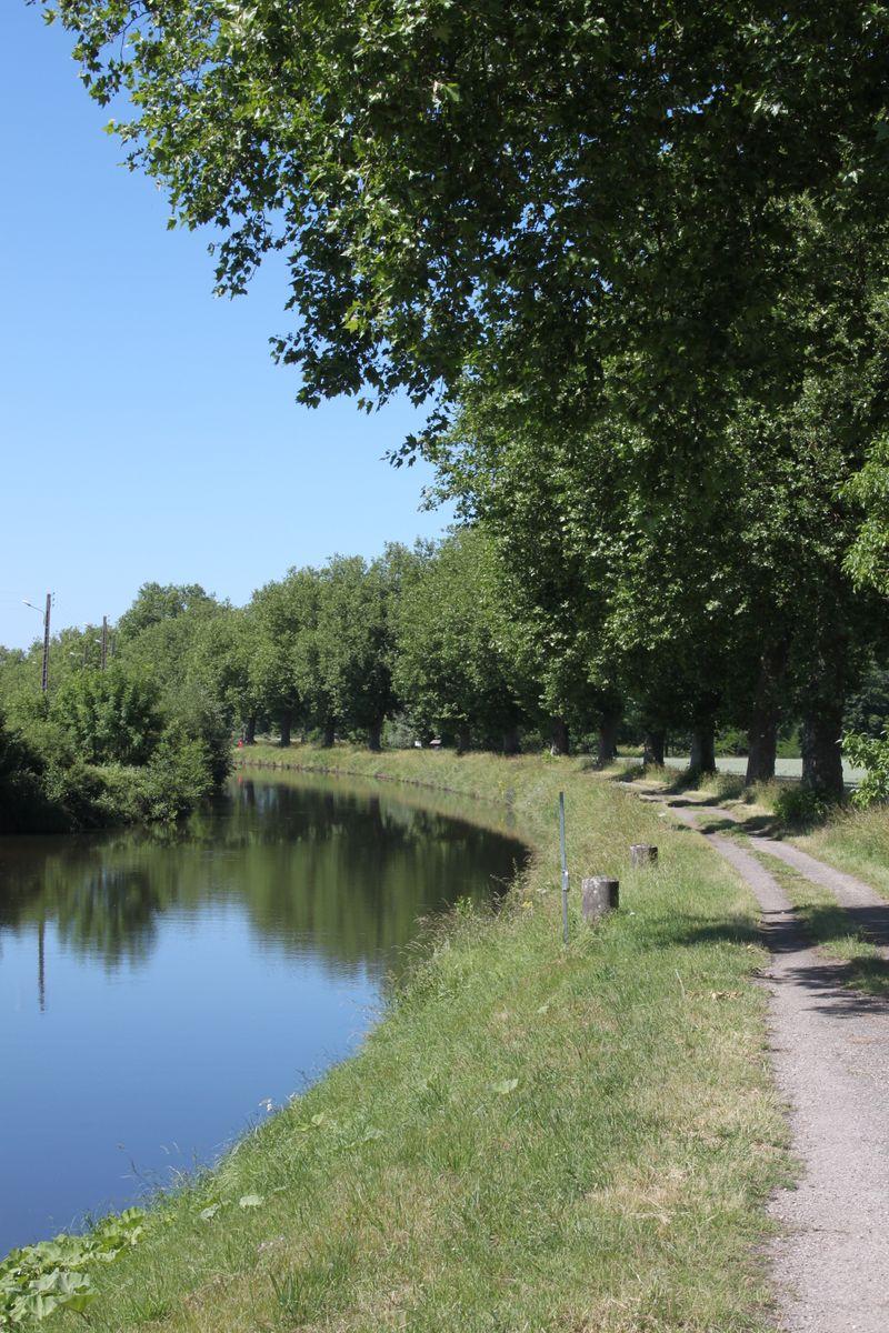 Canal de l'Est à 2km du Gîte la Moselle Sauvage