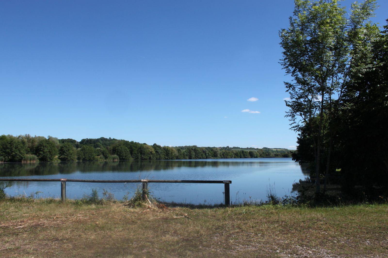 Les étangs de Bayon à 1km du Gîte la Moselle Sauvage