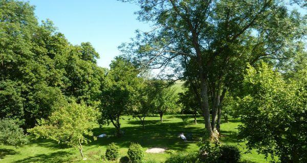 Le parc du gite vu de la terrase du gite