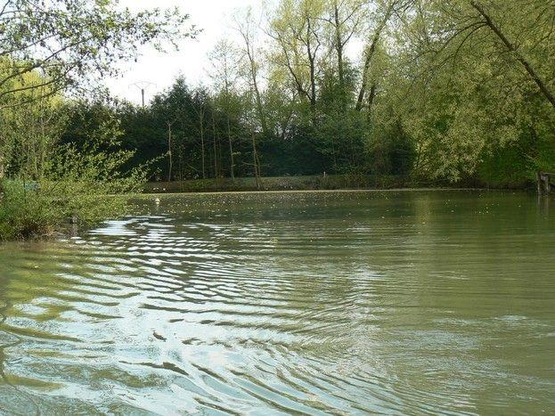 l'étang privé du gîte