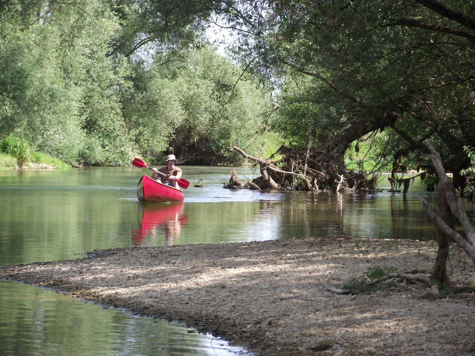 La Meuse en canoé