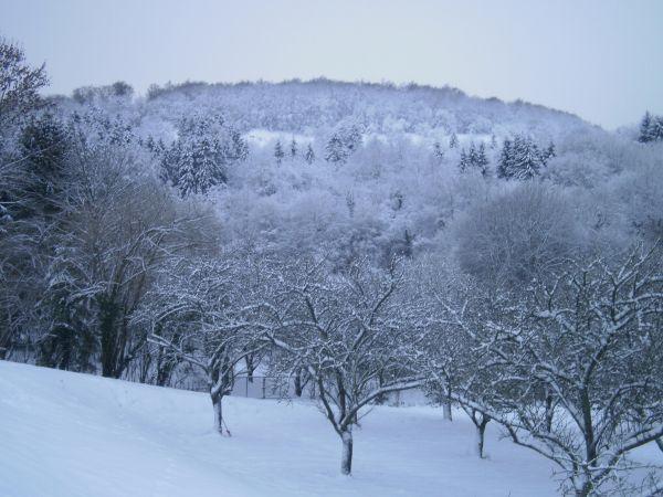 Thillot sous la neige